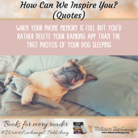 Humorous Quote: Dog Sleeping