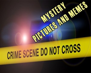 Mystery/Thriller Pictures and Memes