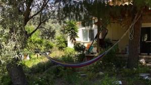 La Bodeguita Writing Retreat Garden Dafni