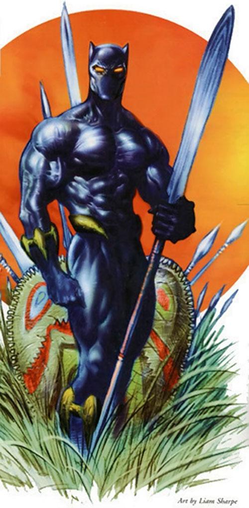 Black Panther Marvel Comics Vs Battles Wiki Fandom Powered
