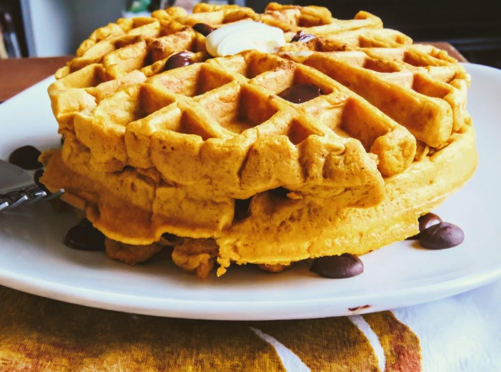healthy dark chocolate chip pumpkin spice waffles