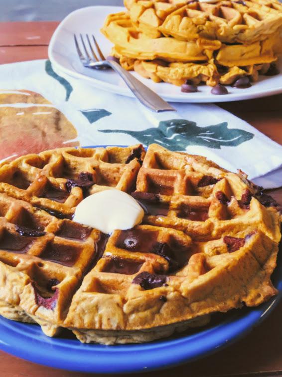 Healthy Dark Chocolate Pumpkin Spice Waffles