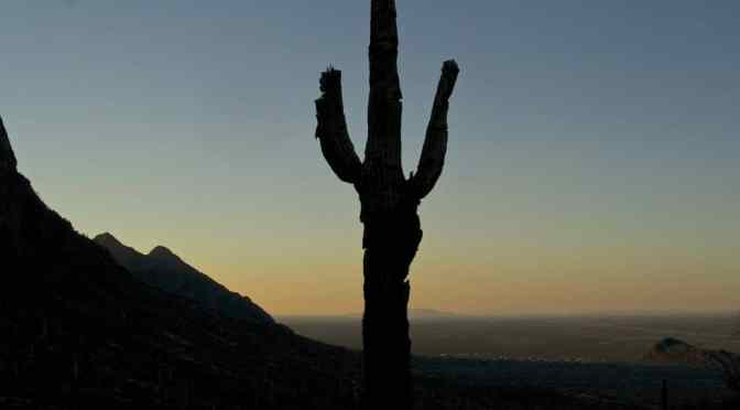 Picacho Peak, Rinches and the Civil War
