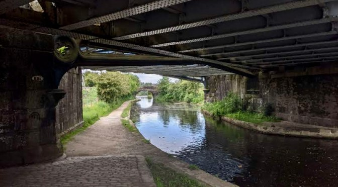 A hissing of Geese: Rochdale Canal Walk