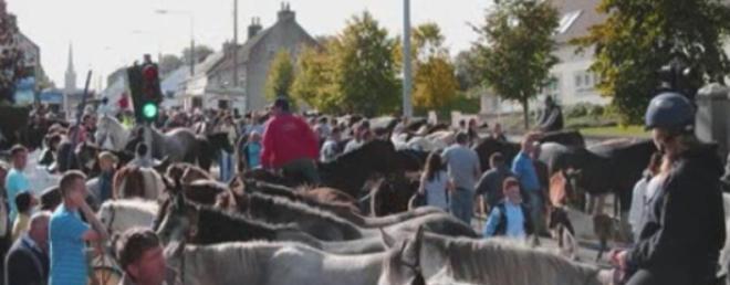 Banagher Horse Fair - Fun of the Fair - Picture Dave Boylan