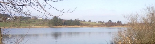 Lough Gowna which has a version of the Loch Ness Monster and a mermaid according to local folklore