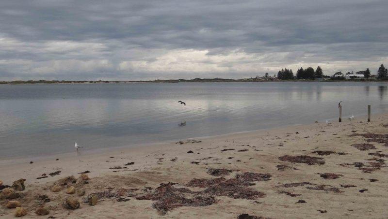 https://www.writteninwaikiki.com/why-im-a-terrible-friend/ beach Waikiki Rockingham Western Australia