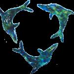Dolphins class logo
