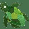 Turtles class logo