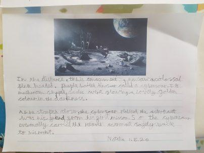 Natalia's written work on the moon landings