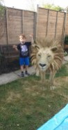 Louie meets a lion