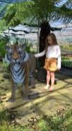 Olive meets a tiger