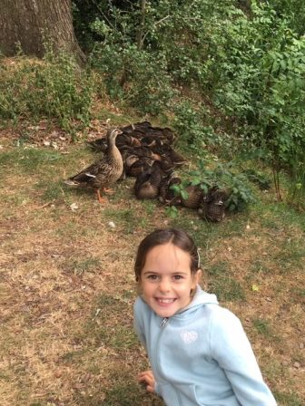 Jess finds some ducklings