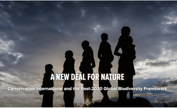 "Conservation International, A New Deal for Nature: ""Countries are in the process of negotiating a new global biodiversity framework through the Convention on Biological Diversity (CBD), which has been called a ""New Deal for Nature."" This pact, expected to be agreed in Beijing in late 2020, will lay out the global strategy for protecting nature through 2030."" Identified in the Level 2 Actions for ""mainstreaming biodiversity"" is ""incorporating the value of biodiversity into national accounting processes"". [Source]"