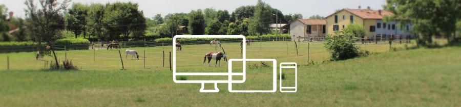 Web design chupito,s ranch