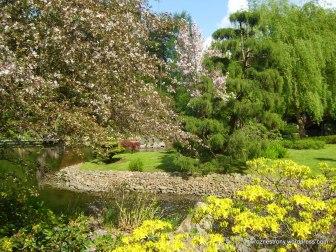 Ogród Japoński (05.2011)
