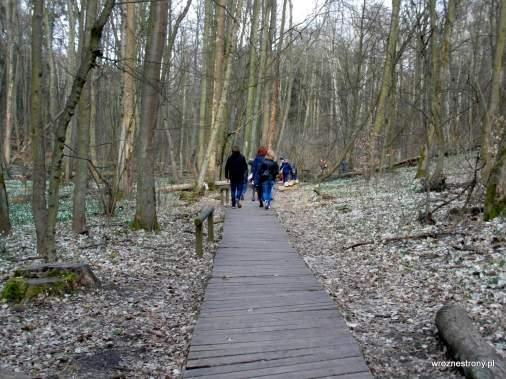 Ścieżka turystyczna przy skraju rezerwatu