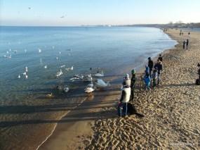 Plaża w Gdańsk Brzeźno
