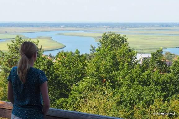 Widok ze Wzgórza Zielonka na wsteczną deltę Świny