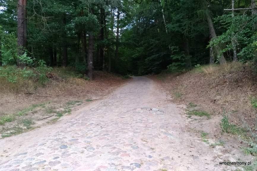 Brukowana część trasy rowerowej