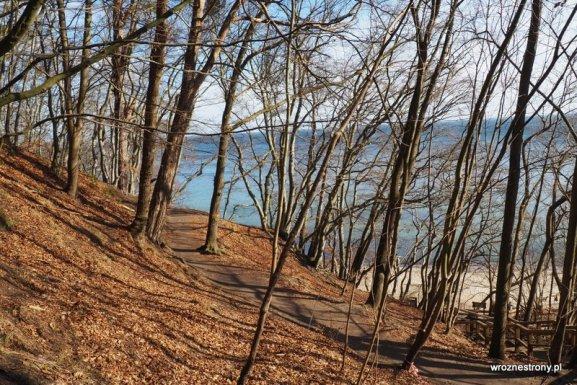 Ścieżka po Klifie Orłowskim