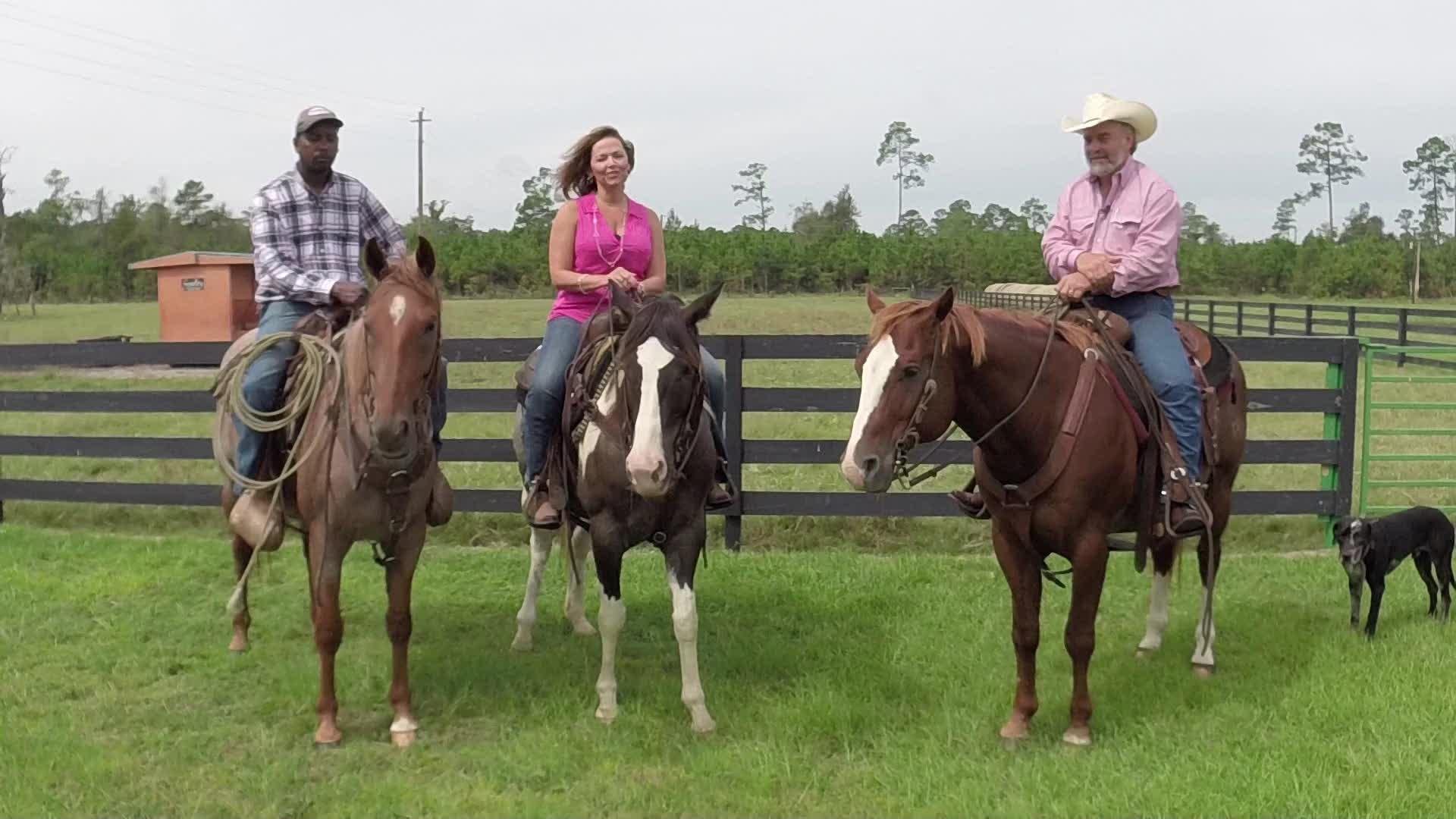 ottawa farms rodeo_46444