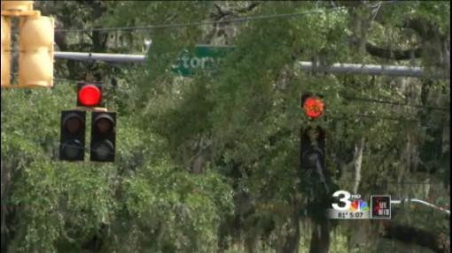 trees block traffic light_245391