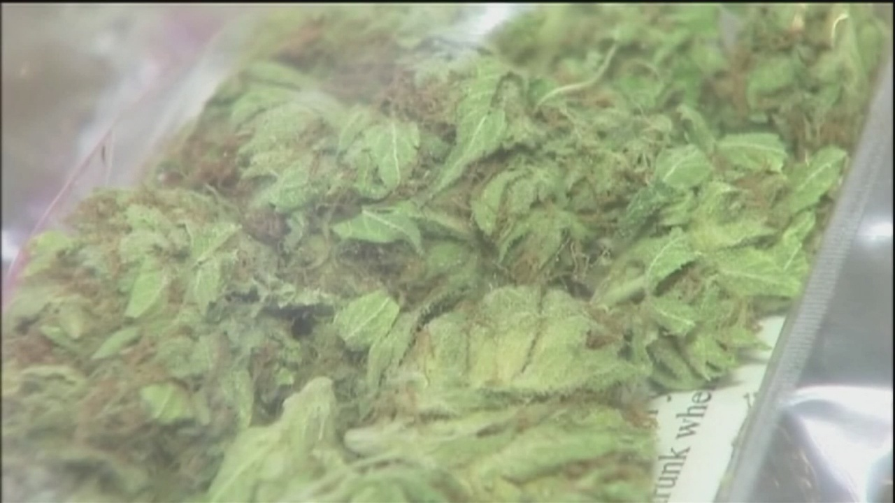 Savannah Police Officers prepare to implement new marijuana ordinance