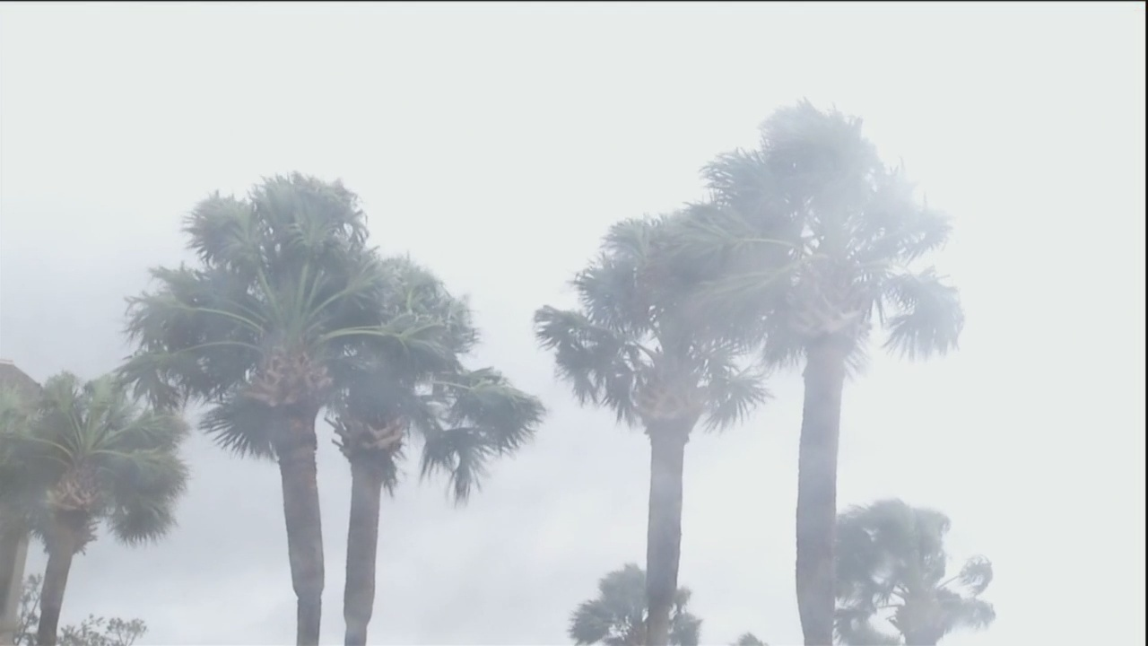 Tropical Storm Hermine Anniversary