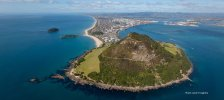 Tauranga – Host with the Most