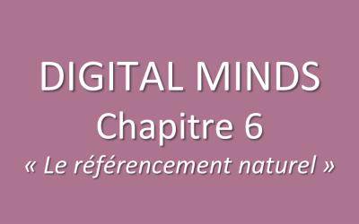 Chapitre 6 du livre des franchisés WSI : le référencement naturel