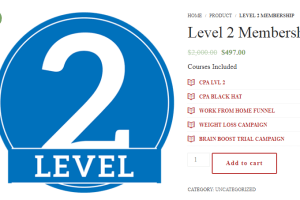DeAngelo – CPA Lvl 2 Course Download