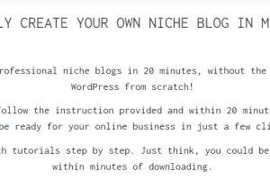 DFY Niche Blogs - Dating and Refinancing Download