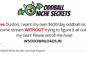 Duston McGroarty - Oddball Niche Secrets Coaching Program Download