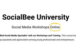 SocialBee – SocialBee University Download