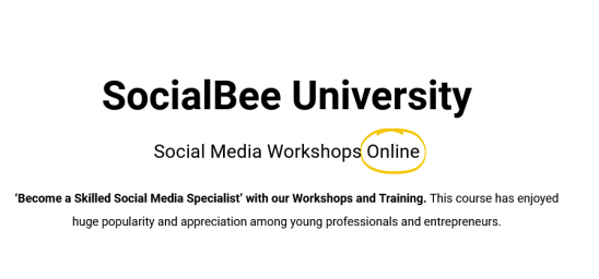 SocialBee – SocialBee University Download