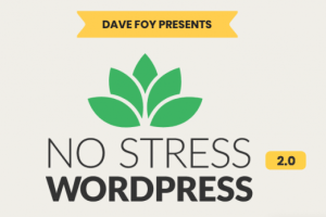 Dave Foy – No Stress WordPress 2.0 Download