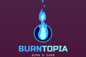 BurnTopia - Burn $1500+ on Google, Microsoft, Pinterest and Snapchat ADS Download
