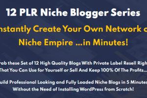 12 PLR Niche Blogs Bundle Free Download