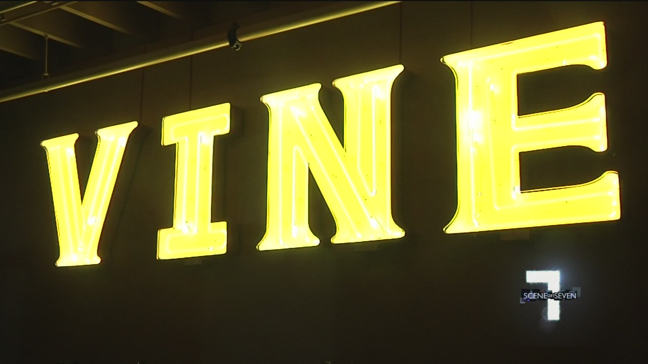 Vine Nightclub_253972
