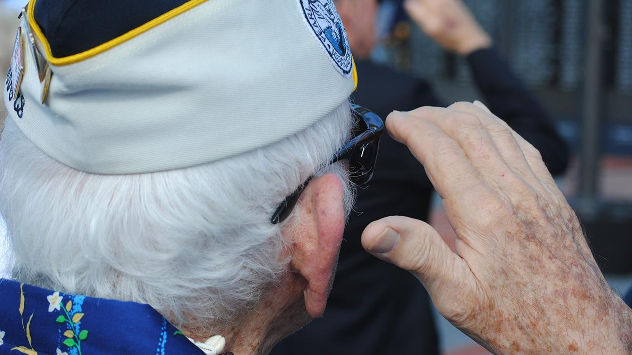 veteran day saluting generic_269594