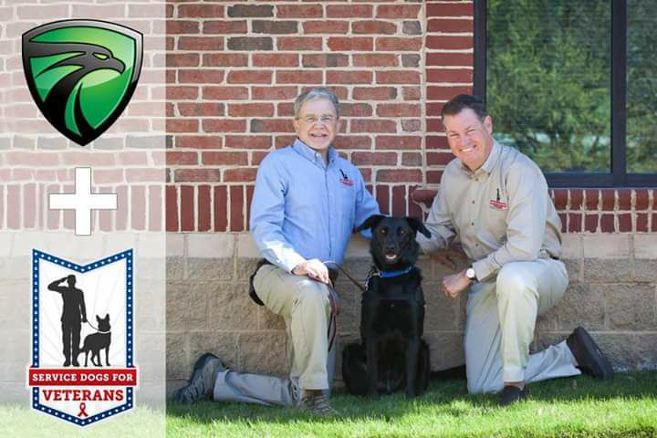 service dogs for veterans_367684