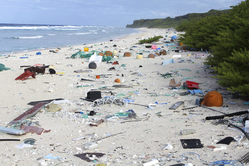 New Zealand Island Trash_383576