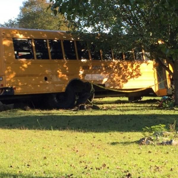 bus crash 1_482098