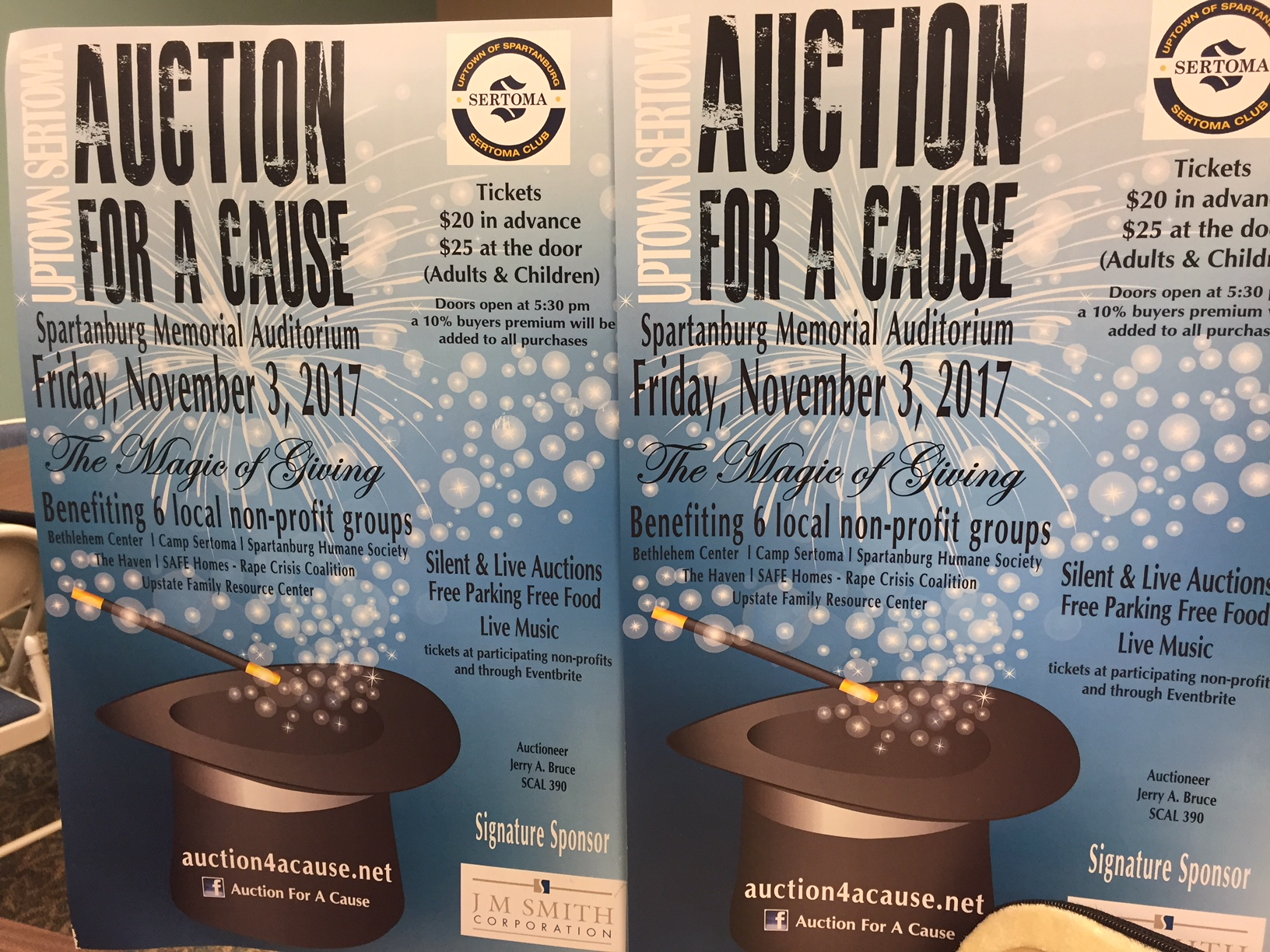 Auction for a Cause 2017_477614