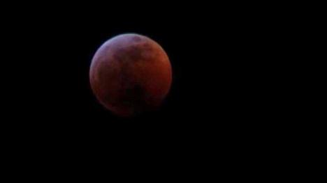 Super blood moon credit Deanna Williams Cropped_1548070548869.jpg.jpg