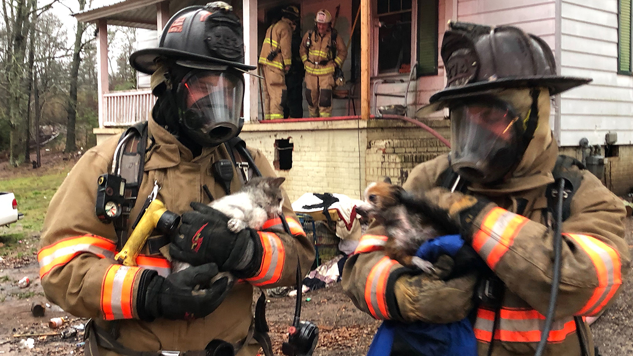 Cat & dog rescued from burning home in Piedmont
