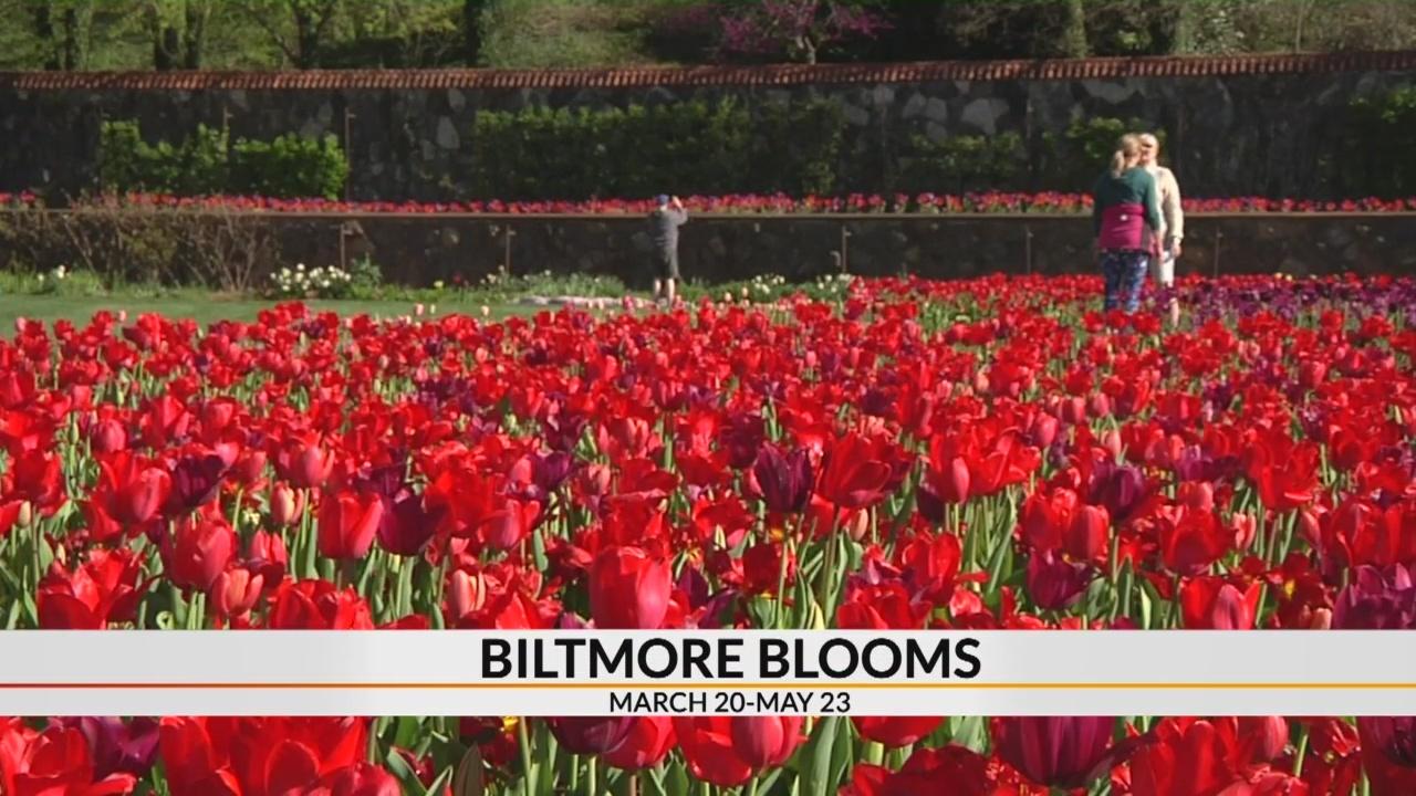 Biltmore spring floral designs tie into Victorian theme