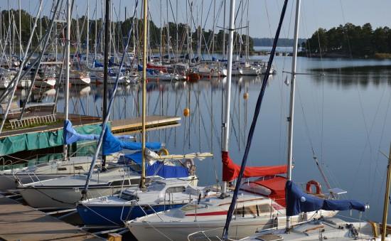 0780WSShamn