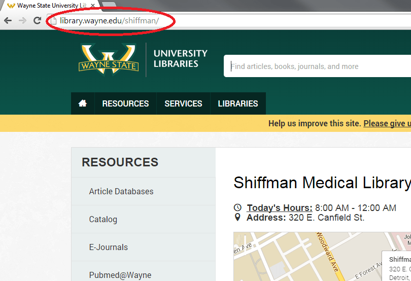 Shiffman Homepage